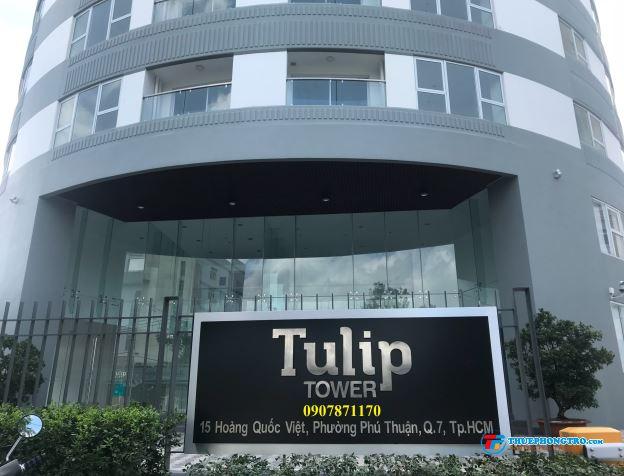 Căn hộ Tulip Tower, đường Hoàng Quốc Việt, Q7. 11 triệu Full nội thất