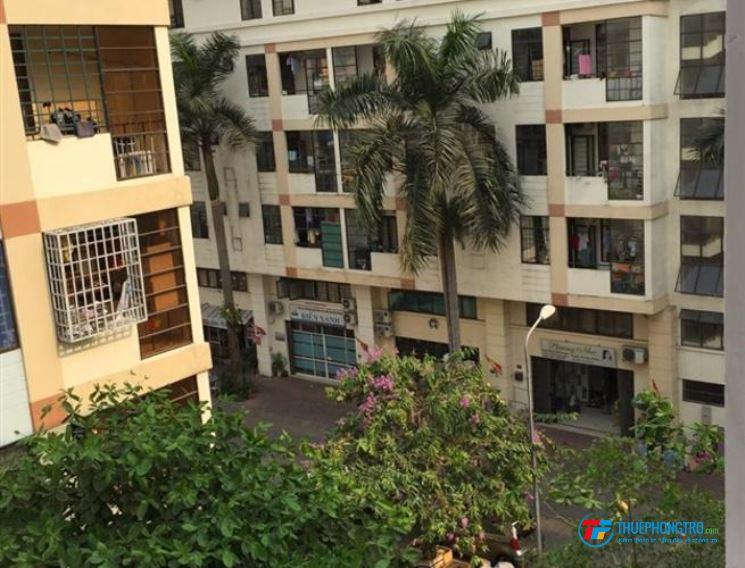 Cho thuê căn hộ chung cư An Hòa 2,Trần Trọng Cung, Quận 7